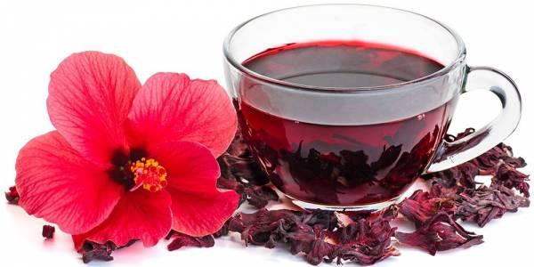 طریقه مصرف چای ترش و خواص آن